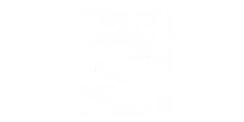 dsp-valley-logo-customer-white
